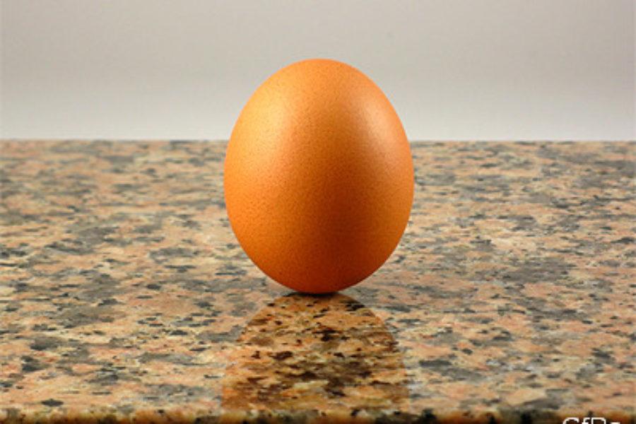 L'arte e la scienza di mettere le uova in piedi